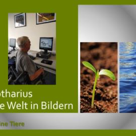 Lothars Welt in Bildern – Meine Tiere